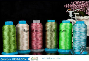Oeko-Tex 1 Class 100% Rayon/Viscose Embroidery 120d/2 Thread 3000m pictures & photos