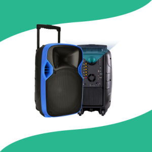 Multimedia Active Portable PA LED Projection Speaker