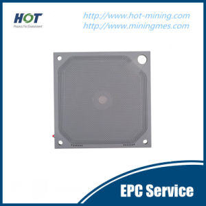 Different Size Membrane Filter Press Plate pictures & photos