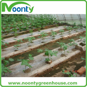 Ground Cover for Single/Multi-Span Film Greenhouse pictures & photos