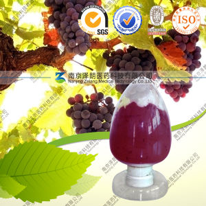 Grape Skin Extract E12 Powder Grape Skin Red Color pictures & photos