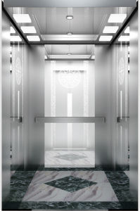 Fujizy Ce/SGS/TUV Approved Residential Passenger Lift pictures & photos
