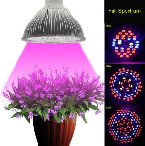 E27 Plant Hydroponics Vegetables Growing Light Cultivo Growing Lamp pictures & photos