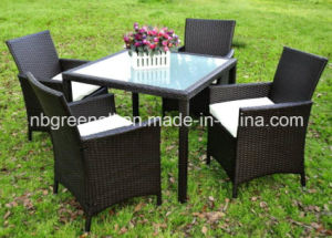 Outdoor Rattan Wicker Dining Table and Chair Patio Furniture pictures & photos