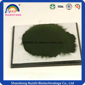 GMP Supplier Spirulina Extract Powder pictures & photos