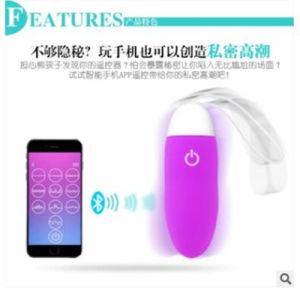 10 Speeds Vibrating Egg Female Masturbation Vibrator USB Recharger pictures & photos