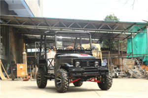 Electric 250cc Beach ATV for Farm pictures & photos