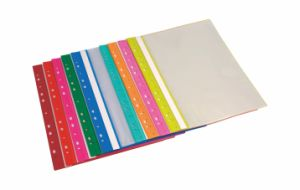 11 Holes Display Book (Clear Book) pictures & photos