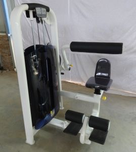 High Quality Fitness Equipment / Back Extension & Abdominal Machine (SR10-B) pictures & photos