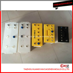 Plastic Automotive Battery Case Mould in China