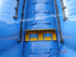 Outdoor Inflatable Giant Water Slide for Amusement Park for Adult/Kids pictures & photos