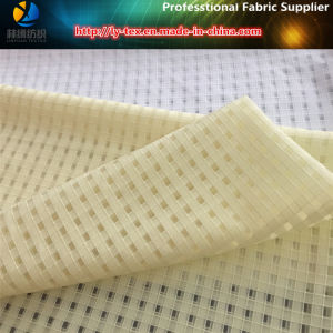 Polyester Organza Fabric for Summer Dress pictures & photos