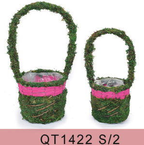 Moss Flower Basket with Handle in Two Sizes pictures & photos