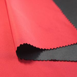 Spandex Imitation Memory Fabric Composite (SLJY11240-4) pictures & photos