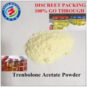 Legit Bodybuilding Fitness Steroid Powder Trenbolone Acetate Finaplix H / Revalor-H