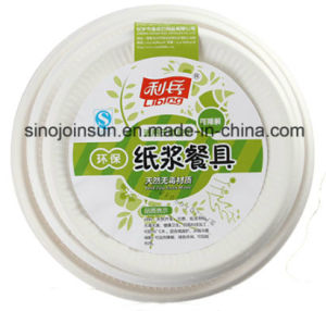 Disposable Paper Tableware and Dish Paper Screen Printing Ink pictures & photos