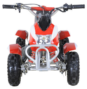 Cheap Mini Kids ATV/49cc 2-Stroke Quad Bike pictures & photos