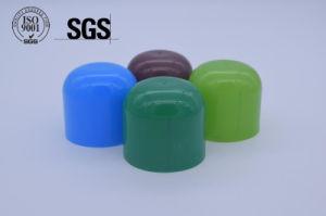 Plastic Injection Mould Plastic Bottle Cap (SGS) pictures & photos
