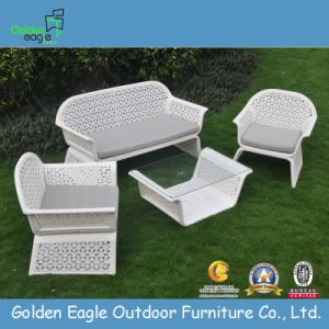 Beatiful White Weave Outdoor Leisure Patio Furniture (Fp0232)