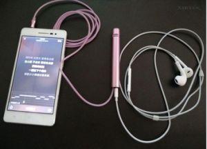 Metal Head HiFi Audio Plug Mobile Mini Karaoke Microphone pictures & photos