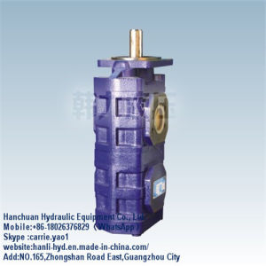 Hitachi Excavator Track Hydraulic Gear Pump Make in China (CBJ2063/2050/2032) pictures & photos