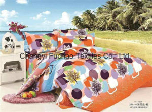High Quality Bedding Set and China Textile Twin Size pictures & photos