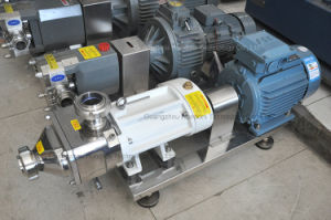 Hygienic Stainless Steel Pharmaceutical Transfer Pump Double Screw Pump pictures & photos