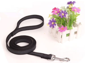 Pet Products Supply Dog Leash (L001) pictures & photos