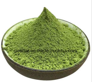 Matcha Powder pictures & photos