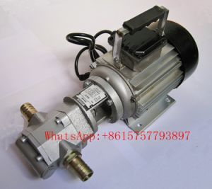 Wcb-30/50/75 Elelctric Gear Pump pictures & photos