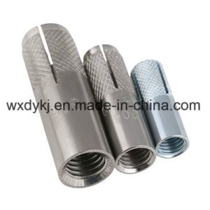 Stainless Steel 304 Drop in Anchor Bolt pictures & photos