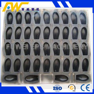 Best Quality EPS Mould pictures & photos