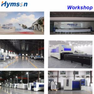 Hymson Fiber Laser Cutting Machine with Germany CNC System pictures & photos