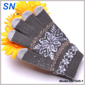 Winter Style Touchscreen Gloves for Smartphones, Tablets (SNTG05-1) pictures & photos