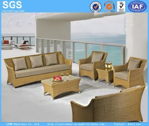 Patio Furniture Holiday Village PE Rattan Sofa pictures & photos