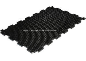 24mm Thickness Interlocking Stable Rubber Mat pictures & photos