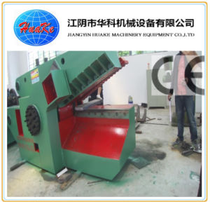 Q43 Series Hydraulic Metal Shear (Q43-2000) pictures & photos