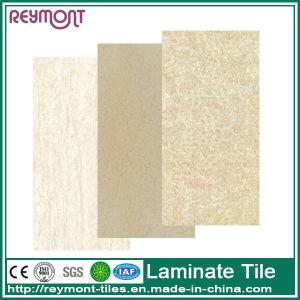 Stone Design Interior Thin Wall Tile