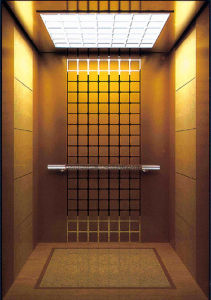 Fjzy-High Quality and Safety Passenger Elevator Fj-1562 pictures & photos