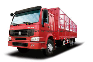 China Sinotruk Brand 6X4 Driving Cargo Truck pictures & photos