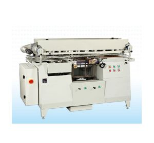 Tin Case SPTE Labeling Machine (MT-06) pictures & photos
