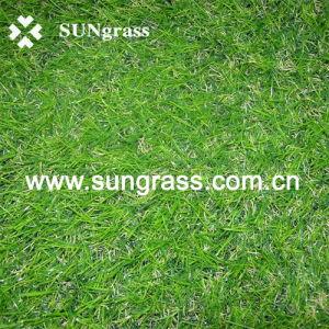 Artificial Grass Carpet for Garden (SUNQ-HY00031) pictures & photos