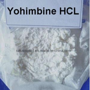 CAS 65-19-0 Yohimbine Hydrochloride/ Yohimbine HCl for Aphrodisiac Powder