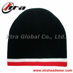 Good Style Beanie Hat (XT-W011) pictures & photos