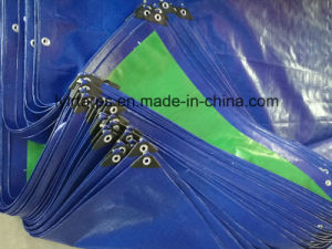 Finished PE Tarp Sheet, Heavy Duty PE Tarpaulin Cover pictures & photos