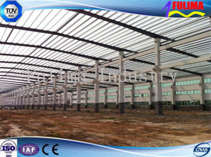 Light Steel Structure for Workshop/Warehouse (FLM-045) pictures & photos