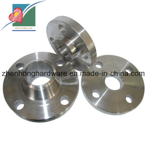 Stainless Steel Welding Forged Flanges (ZH-317)