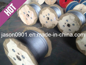 Ss304/Ss316 Stainless Steel Wire Rope, Wire Rope pictures & photos