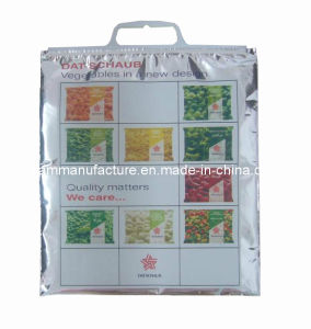 Thermo Bag (KM2315) pictures & photos