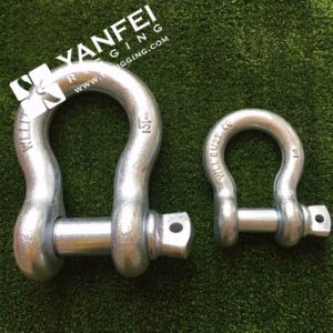 Yfebs European Type Large Bow Shackle pictures & photos